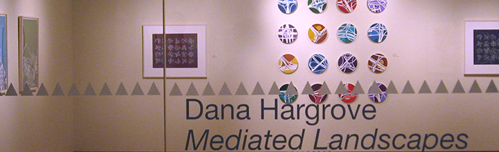 Mediated Landscapes- Solo Exhibition